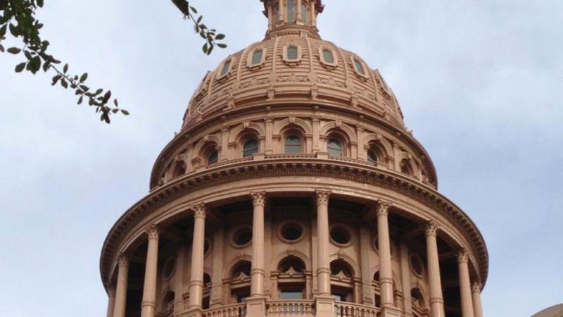 Texas Medicaid Issues Facing the 86th Legislature – Texas
